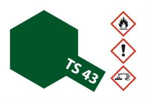 Acryl-Spray-Farbe TS 43 Racing-grün 100 ml