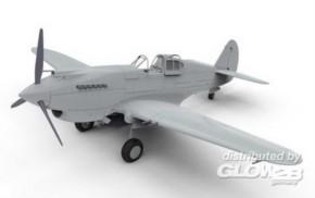 Curtiss P40B