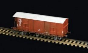Güterwaggon mit Bremsstand