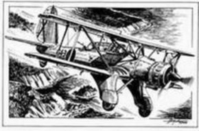 Arado Ar 95 Radversion, Resin, limitiert